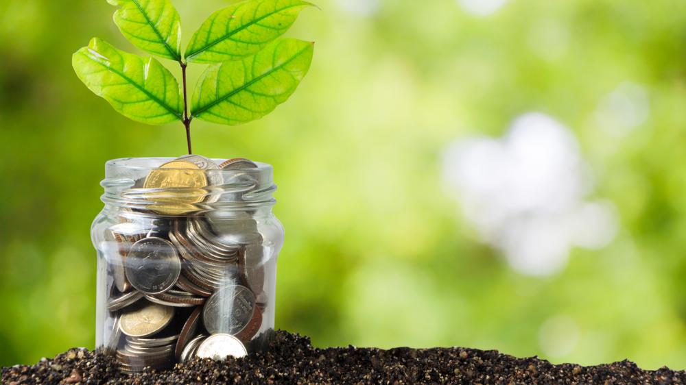 grønne investeringer